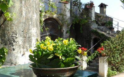 MAGGIO: L'importanza scenografica dei contenitori